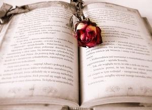 Escribir una novela romántica