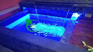 jasa renovasi kolam