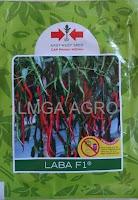 cabai f1 laba,cabai keriting panah merah,panah merah,cabai laba