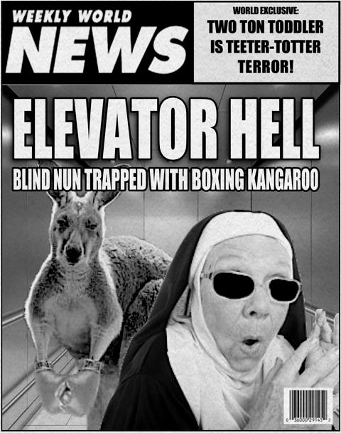 stilton's place, stilton, political, humor, conservative, cartoons, jokes, hope n' change, weekly world news, blind nun, boxing kangaroo, elevator