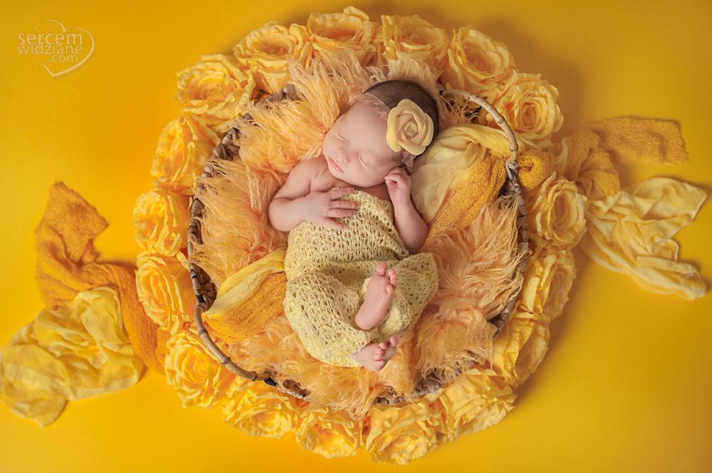 zdjęcia noworodka z góry, zdjęcia noworodkowe w gnieździe, duży wybór stylizacji do sesji noworodkowej, profesjonalne sesje dla maluszków, bezpieczna sesja noworodkowa w domu,