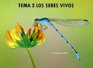 https://www.dropbox.com/s/6iy9ke295r8dmnx/La_Tierra_un_planeta_habitado.ppt?dl=0