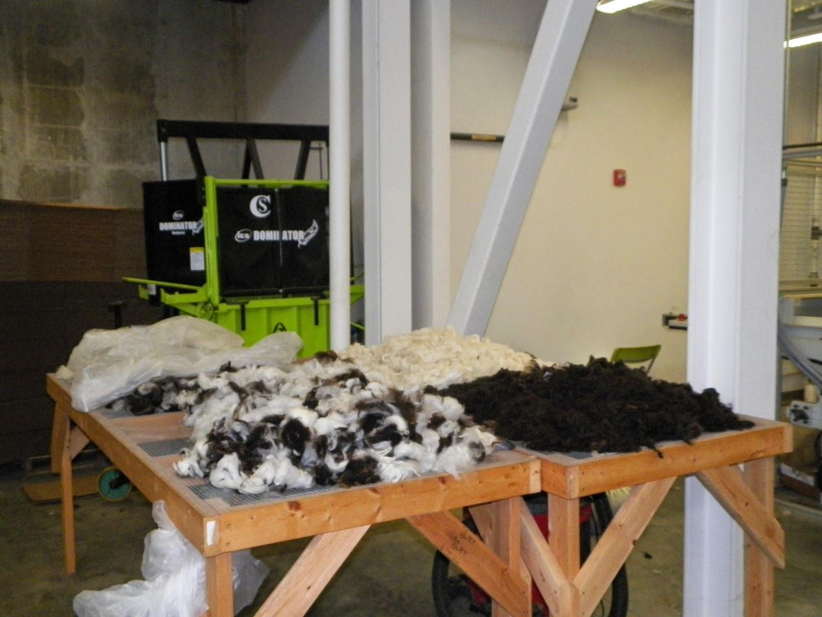 Knit On Regardless Echoview Fiber Mill