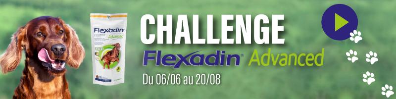 Challenge Flexadin Advanced