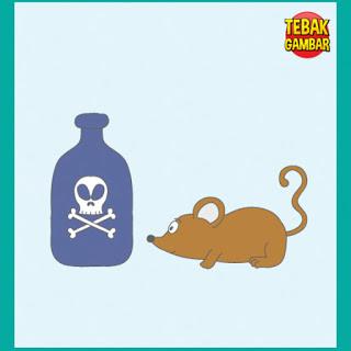 Tebak Gambar Botol Gambar Tenngkorak Racun Tikus