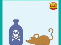 Tebak Gambar Botol Gambar Tengkorak Racun Tikus