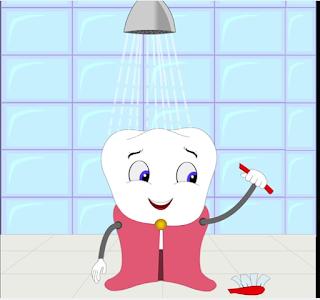 media pembelajaran struktur gigi