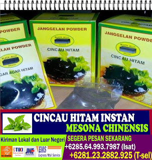 Supplier Cincau Hitam, Bubuk Cincau Instan, Mesona Chinensis Powder, +6281.23.2882.925