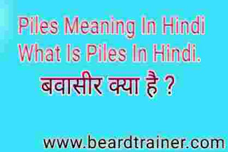 Piles Meaning In Hindi