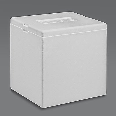 Image result for styrofoam ice box lab