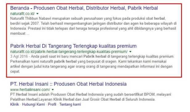 Jasa SEO Profesional   LOGIQUE Digital Indonesia Jasa Seo Terlengkap