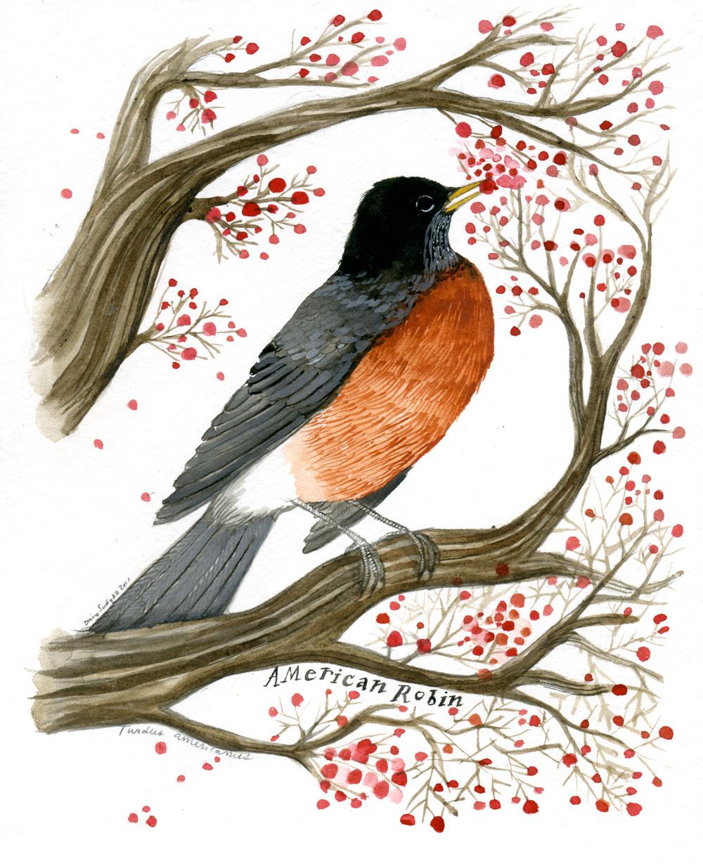 bird bird menu