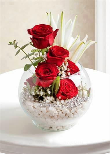 amazing beautiful red rose  image