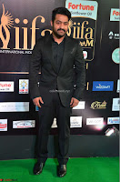 NTR and others Celebs at  at IIFA Utsavam Awards 2017  Day 2   Part 3 ~  19.JPG