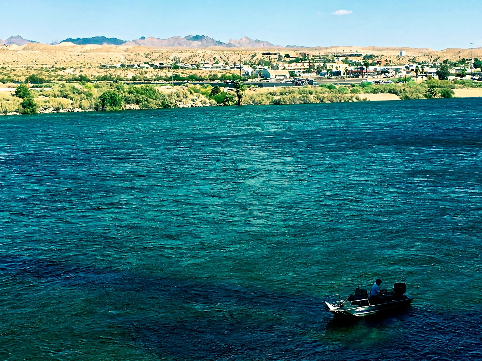 Laughlin buzz southern nevada fishing reports may 2017 for Willow beach fishing report