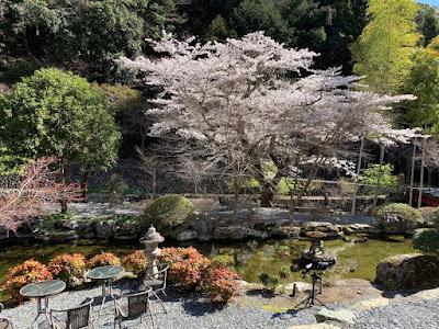 船山温泉 ロビー前の庭