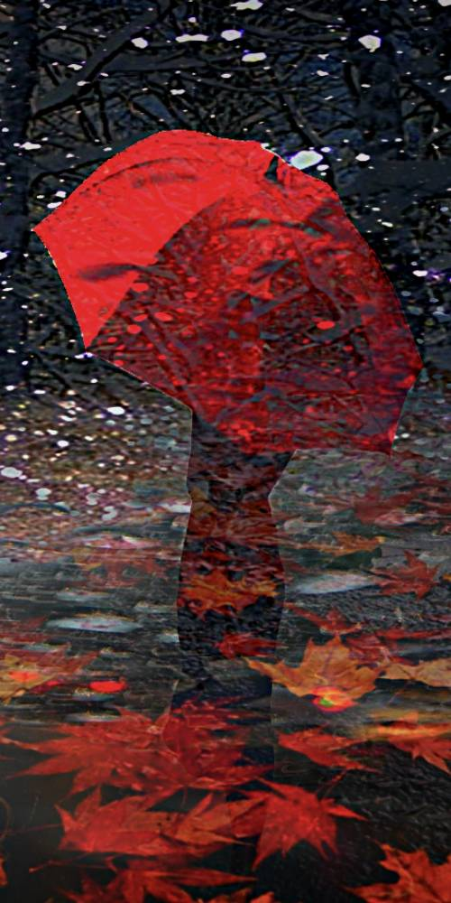 ambiente de leitura carlos romero cronica conto poesia narrativa pauta cultural literatura paraibana jose leite guerra sombrinha guarda-chuva observacao cotidiana redes sociais