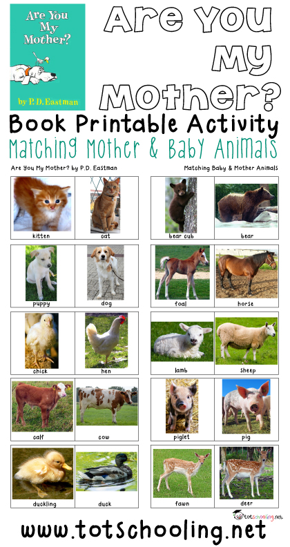 It's just a graphic of Selective Animal Matching Game Printable