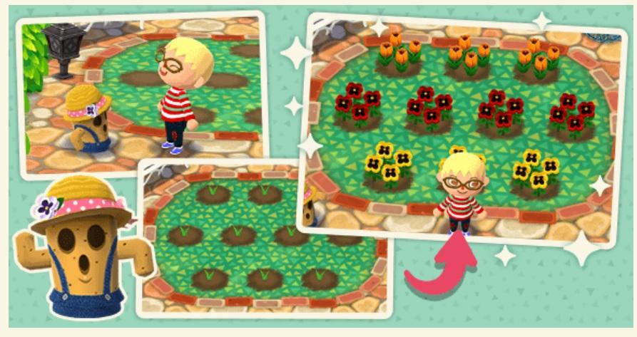 Animal Crossing: Pocket Camp espera dos nuevas funciones y un nuevo personaje