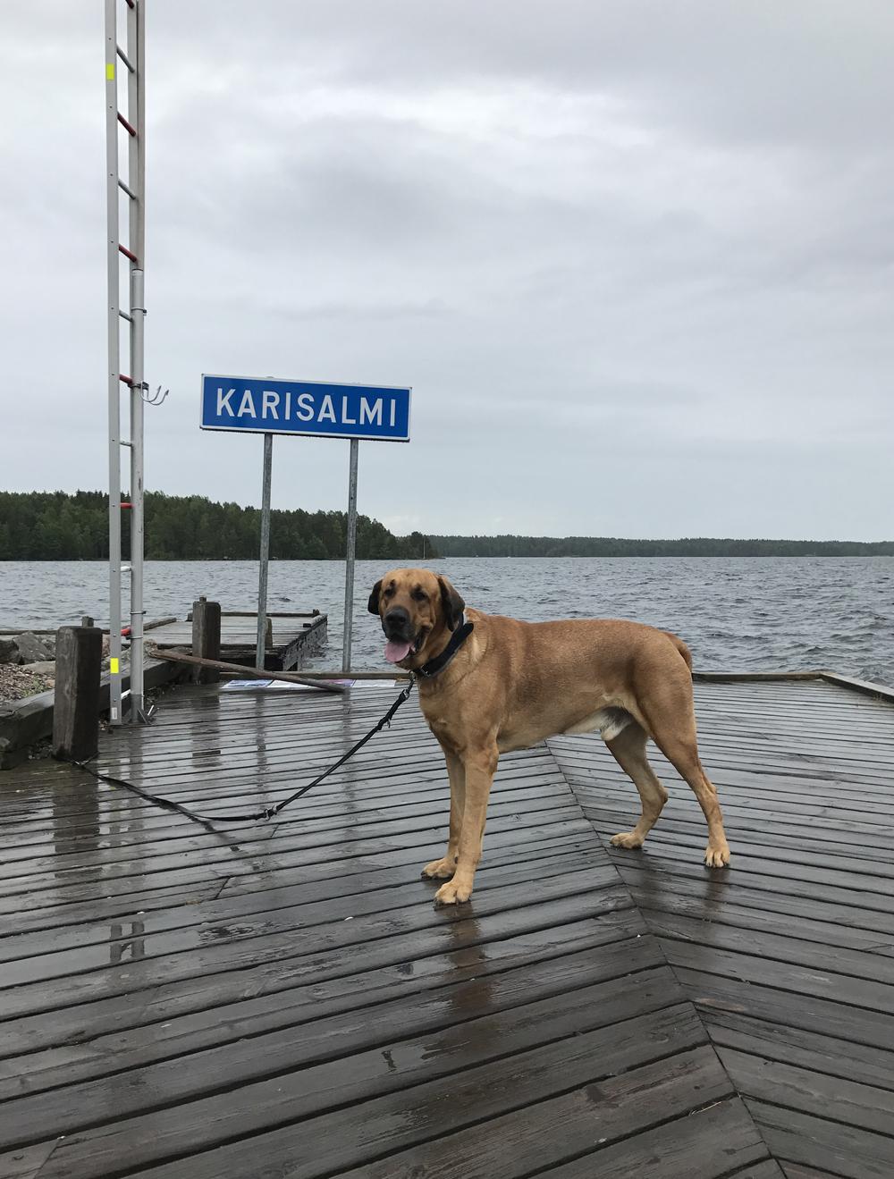 Keski-Suomen roadtrip 3