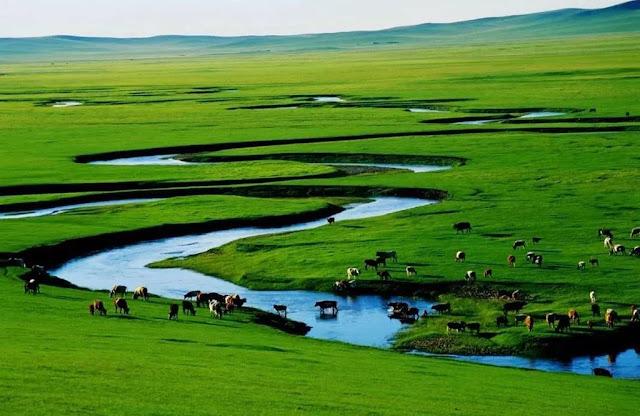 Thảo nguyên Xilin Gol