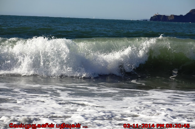 Sea Cliff Golden Gate Bridge