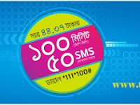 Grameenphone minutes and SMS bundle offer
