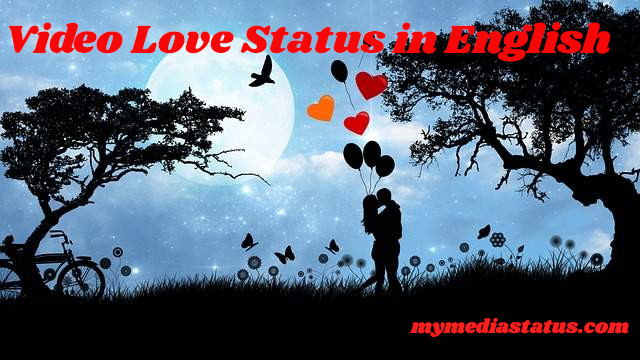 Download Best Collection Of English Love Status Video