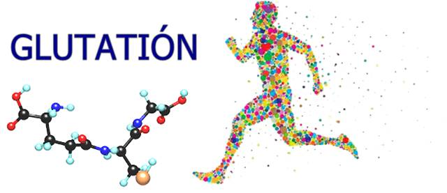 Beneficios del Antioxidante Glutatión
