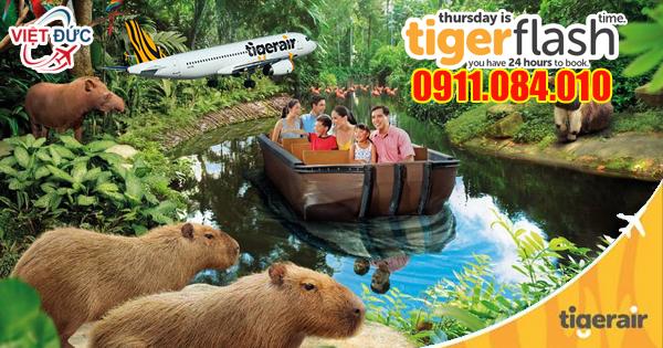 Đặt mua vé máy bay Tiger Air khuyến mãi đi Singapore