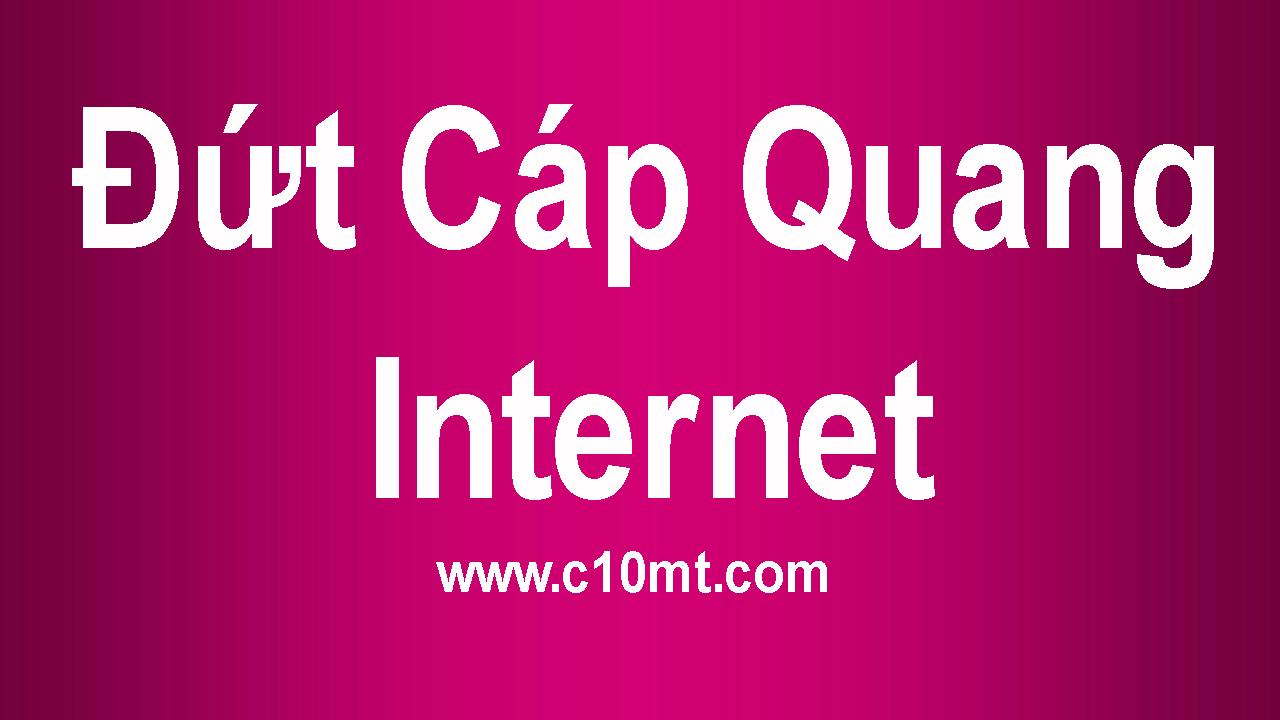 Đứt cáp quang biển toàn bộ mạng tê liệt trên Internet