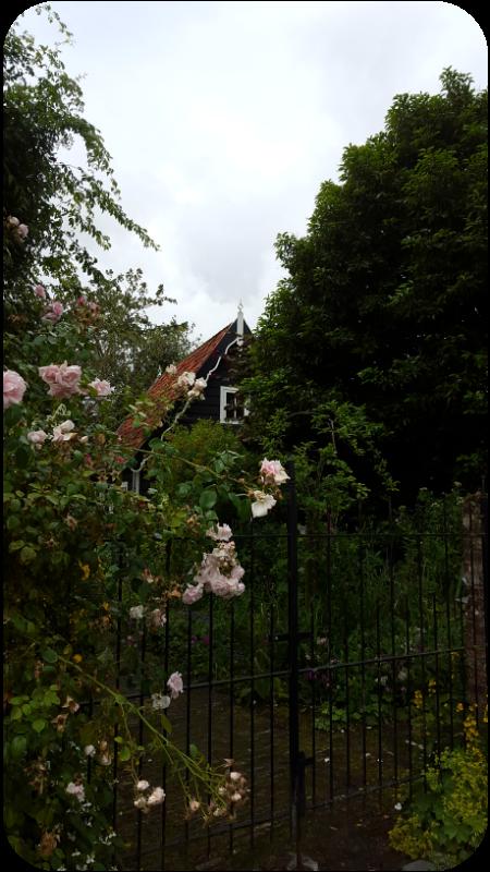 Typisches Haus in Veere, Provinz Zeeland, Holland (Niederlande) | Arthurs Tochter Kocht von Astrid Paul