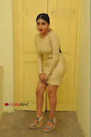 Actress Pooja Roshan Stills in Golden Short Dress at Box Movie Audio Launch  0015.JPG
