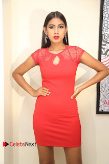 Actress Model Honey Pictures at Anoos Franchise Salon and Clinic Launch  0063.JPG