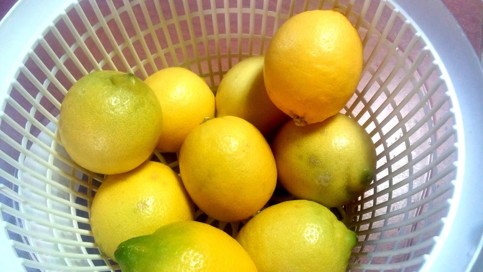 Limon YağıFaydaları ve Kullanım Alanları