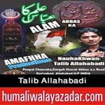 http://audionohay.blogspot.com/2014/10/talib-allahabadi-nohay-2015.html