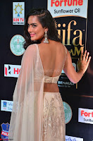 Prajna Actress in backless Cream Choli and transparent saree at IIFA Utsavam Awards 2017 0024.JPG