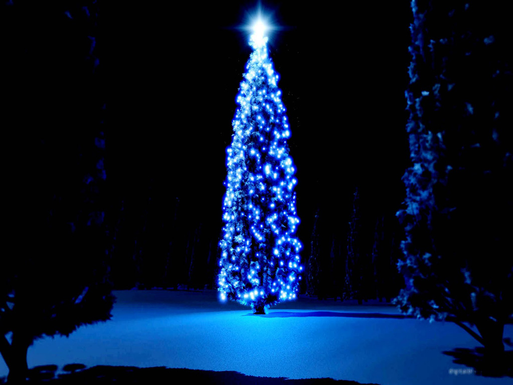 Holiday Wallpaper For Ipad: Free Download Christmas Tree HD Wallpapers For IPad