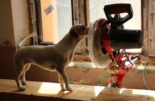 Thelma checking out my power tool