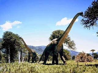 Foto Brachiosaurus
