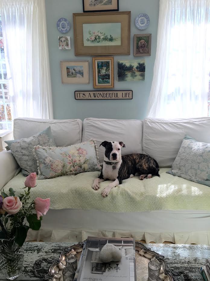 Maison Decor Video Shoot And A Living Room Tour