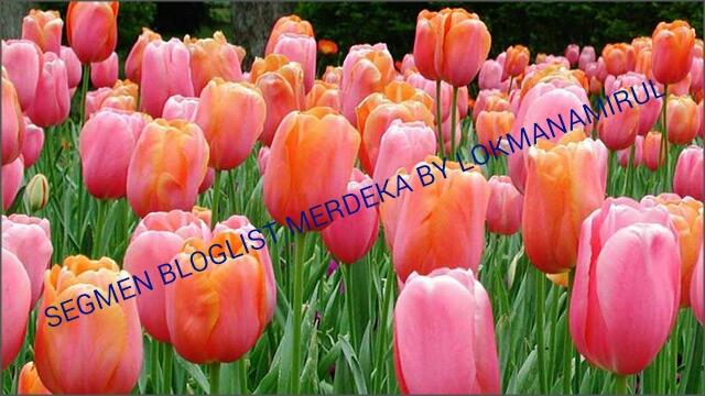 http://www.lokmanamirul.com/2016/08/segmen-bloglist-merdeka-by-lokmanamirul.html