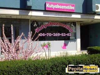 http://www.pepitahirdeto.multiapro.com