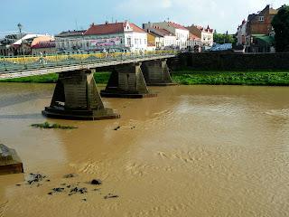 Ужгород. Пешеходный мост через Уж