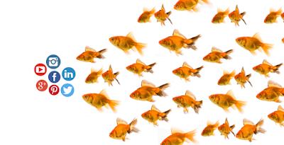 Influencer Marketing - Definition, Themen & Werbeformen DIM