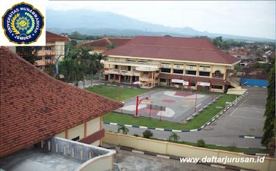 Daftar Fakultas dan Program Studi Universitas Muhammadiyah Jember