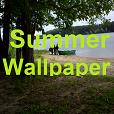 Wallpaper 'Summer'