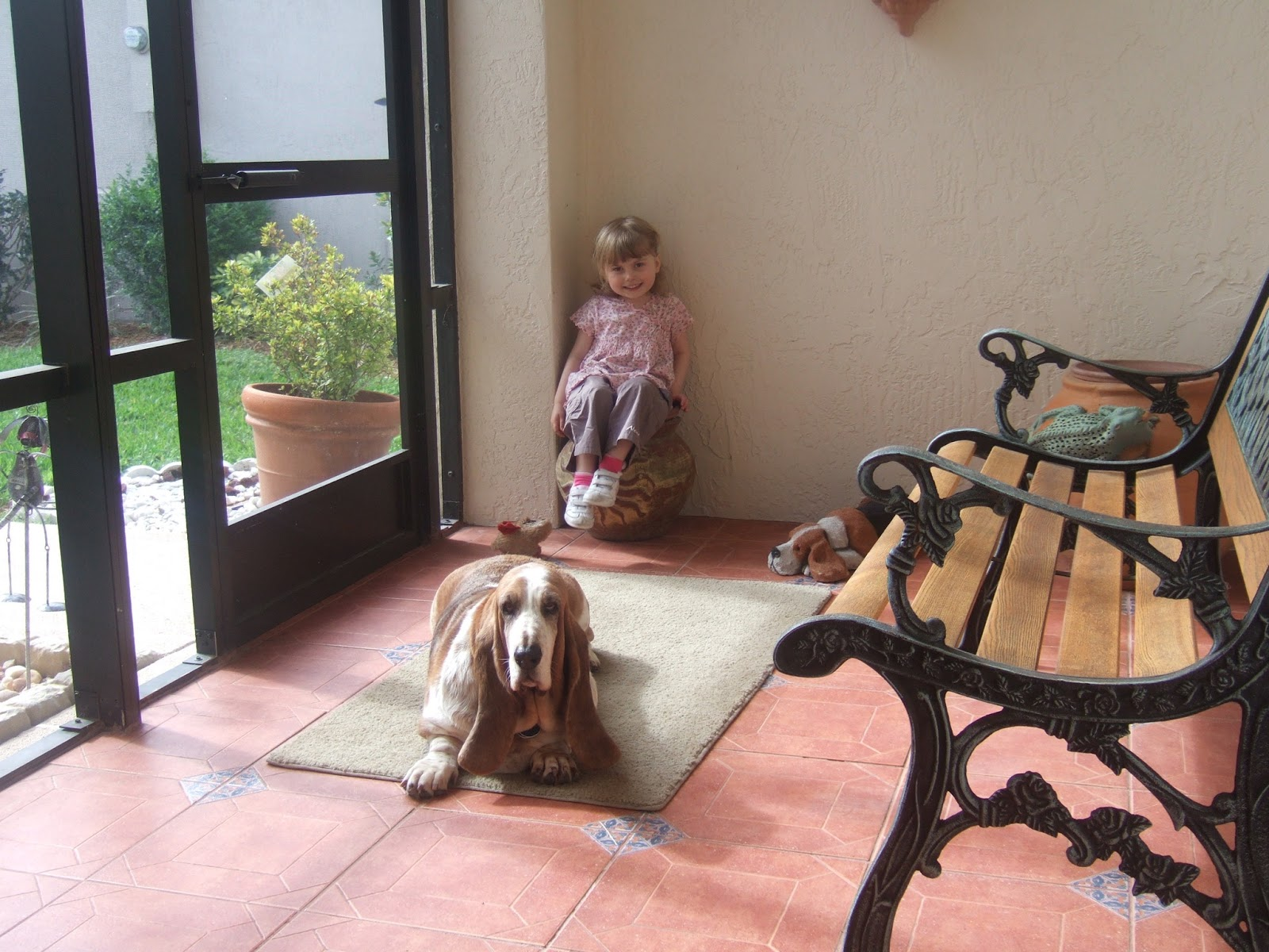 The Tubblet and a Basset Hound