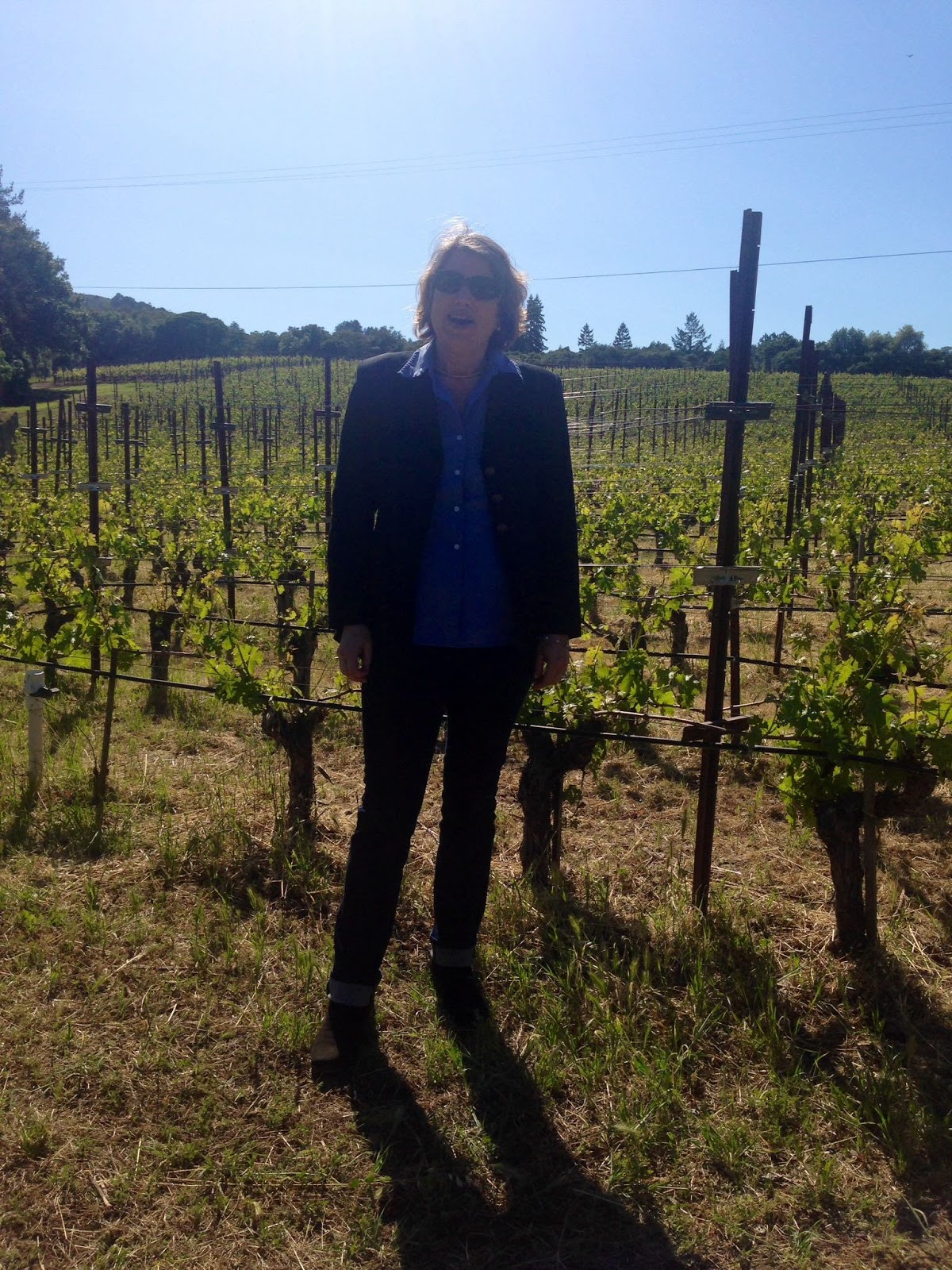 Organic Wines Uncorked: 2015