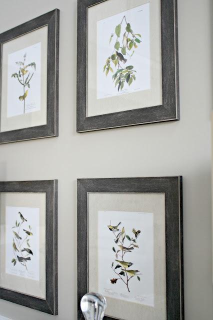 Free Audubon art printables